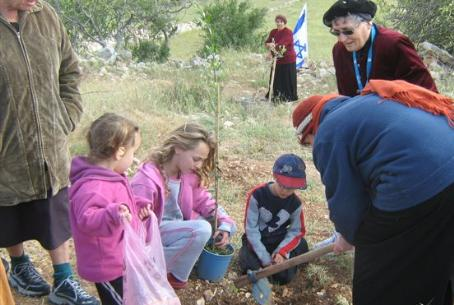 Activists Plant Trees on Lag Ba'Omer