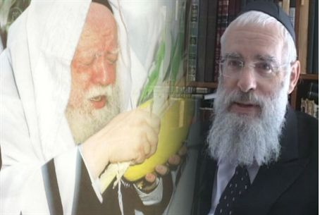 Rabbi Avraham Shapira
