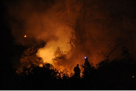 Firefighters in Hacarmel forest