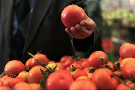Israeli tomatoes are highly prized around the