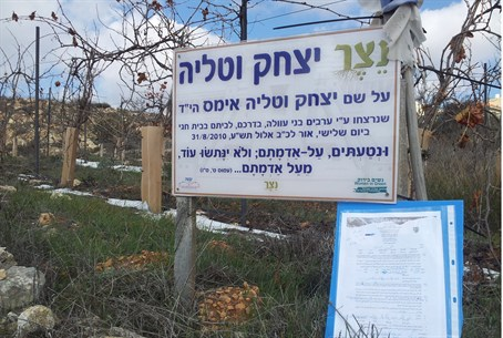 Tree 'expulsion' order at Netzer in Gush Etzi