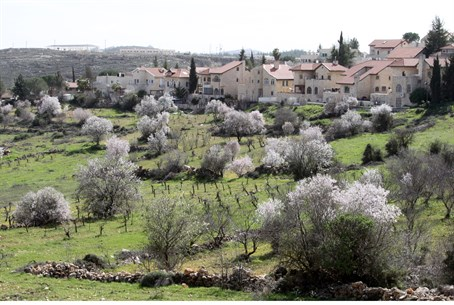 Efrat - Israel's greenest town?