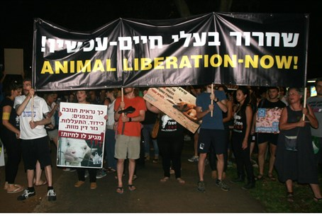 Israeli animal rights activists