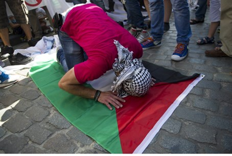 Pro-Palestinian protestor in Paris, France (file)