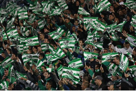 Maccabi Haifa fans (illustration)