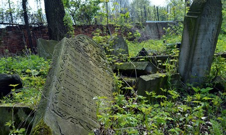 Abandoned Jewish cemetery in Poland (illustration)