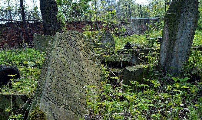 Abandoned Jewish cemetery in Poland (illustrative)
