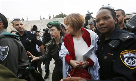 Lesley Sachs detained by police (file)