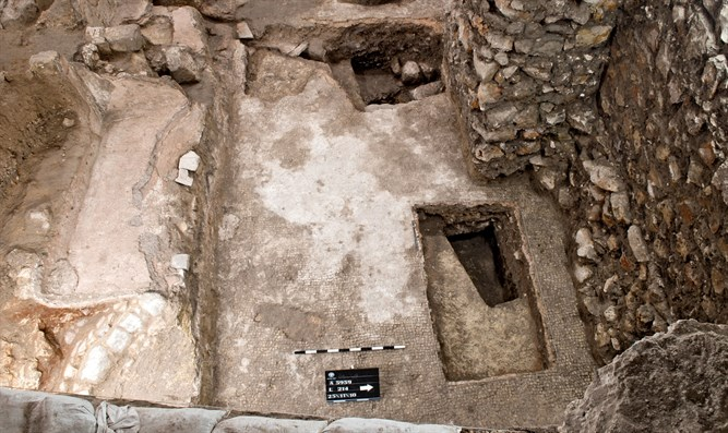 The excavations