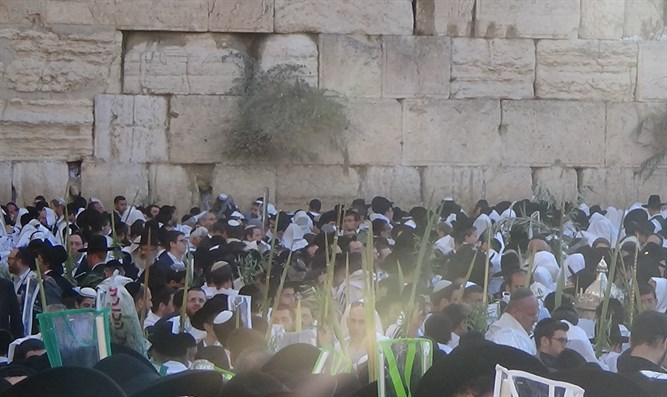 Early-morning prayers at Western Wall