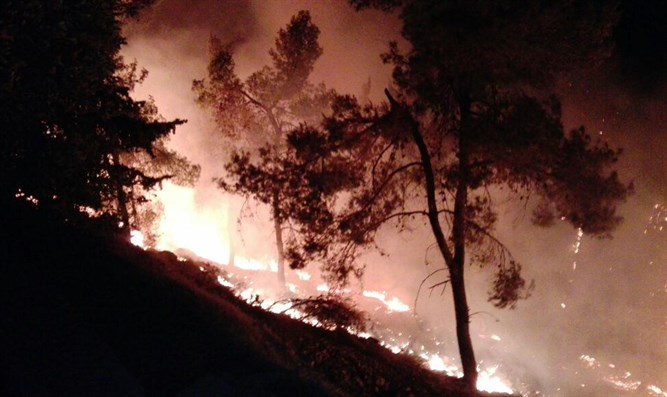 Fire in Gush Etzion