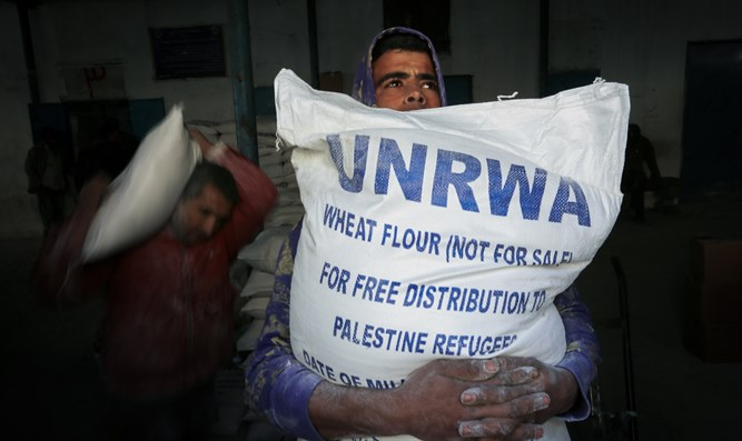 """Palestinian refugees"" get food hand-outs from UNRWA in Gaza"