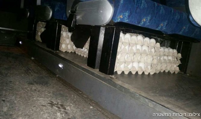 The smuggled eggs hidden under bus seats