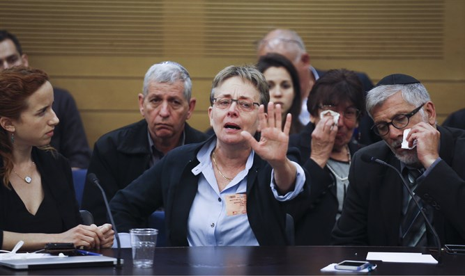 Leah Goldin in the Knesset