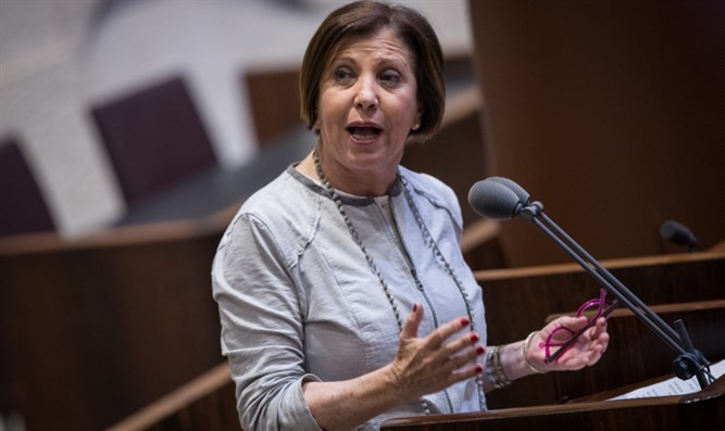 Meretz chief Zahava Galon speaks in the Knesset