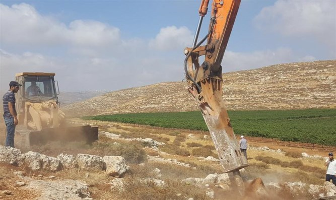 Work on Amichai begins