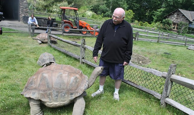 Michael Steinhardt interacting with his tortoises.