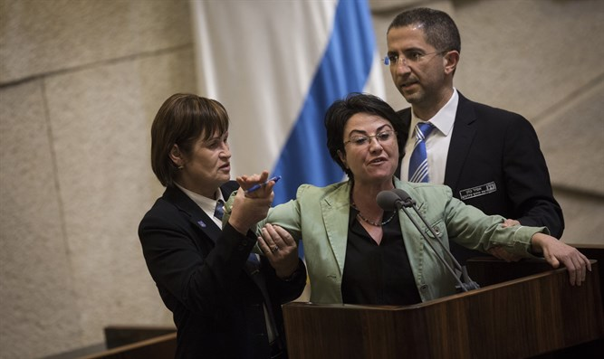 Hanin Zoabi escorted from Knesset plenum