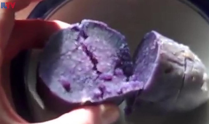 Israeli team infuses beet pigments into veggies
