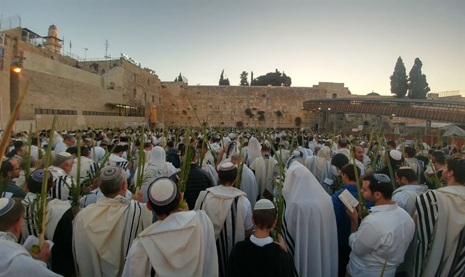 Thousands attend early morning prayers at Western Wall on Hoshana Rabba