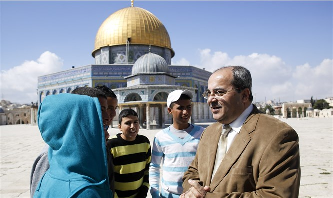 Tibi on Temple Mount