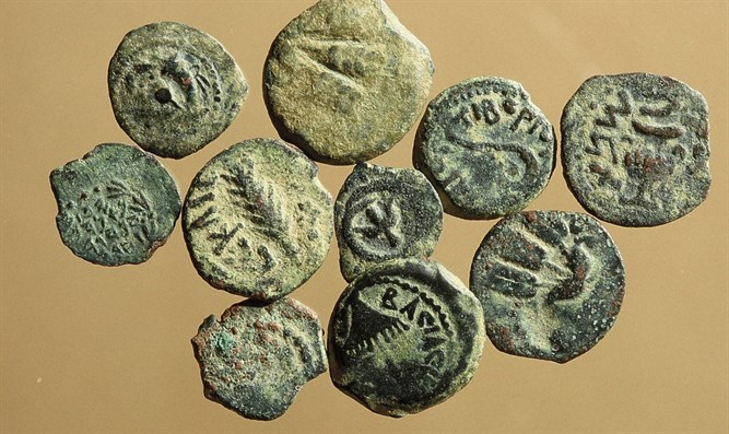 Coins discovered at site