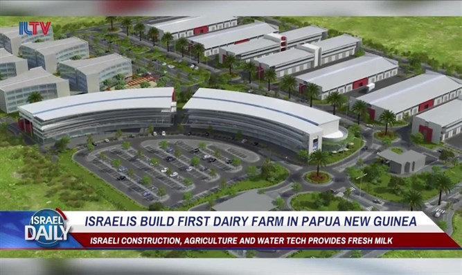 Israelis build first dairy farm in Papua New Guinea