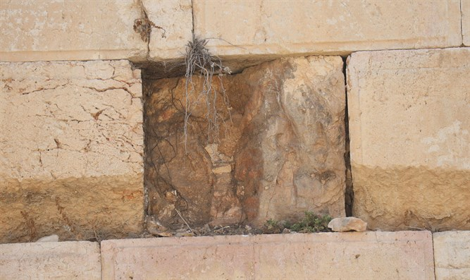 Spot from where boulder fell at Western Wall