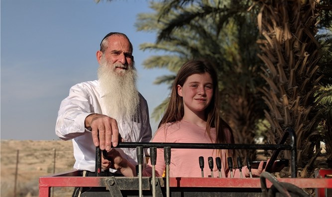 Yehoshua Meshulami and his granddaughter in the date orchard