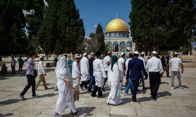 Making history on the Temple Mount