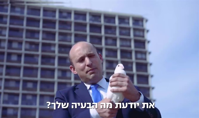 Bennett tells dove how to make peace