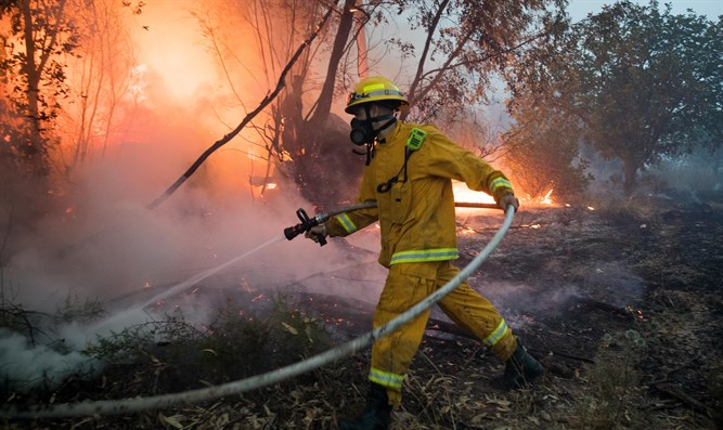 Firefighters work to extinguish forest fire near Kibbutz Harel, May 23, 2019.