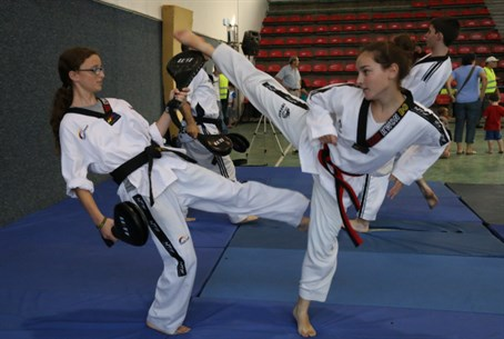 Girls learn martial arts (illustration)