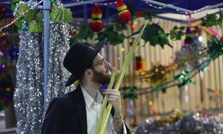 Pleasant Weather Greets Israel for Sukkot - Israel National News