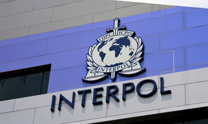 interpol - photo #31