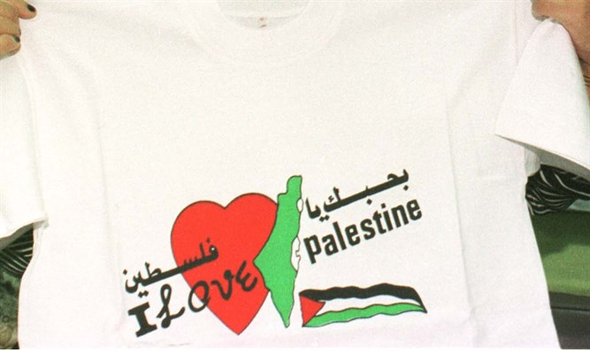 'I Love Palestine' T-shirt