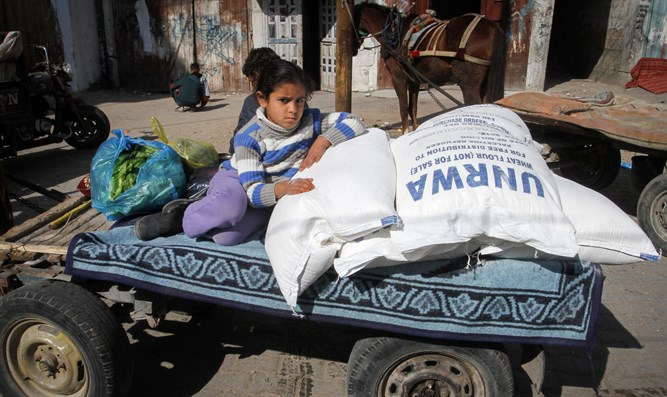 Perpetuating misery:  UN handout in Gaza