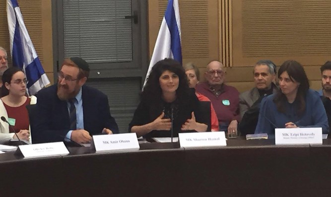 MK Sharren Haskel speaking at Lobby meeting