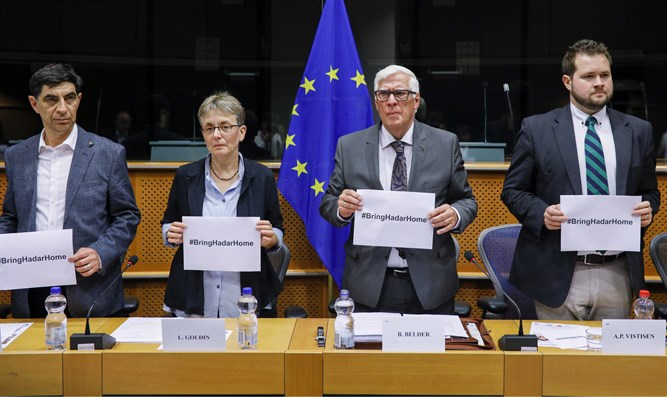 The European Foreign Affairs Committee expresses solidarity with the Goldin family