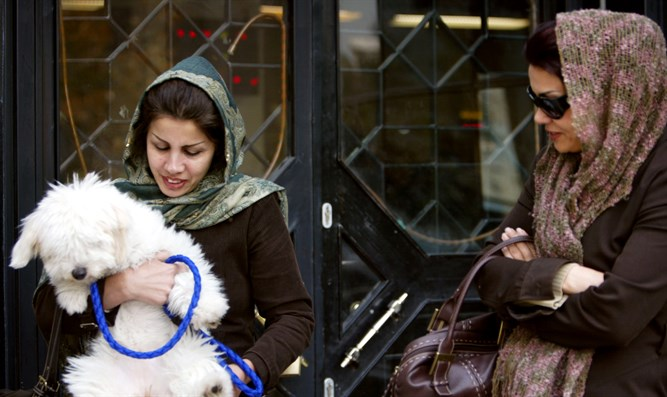 Iranian woman holds her dog out of bank in Tehran