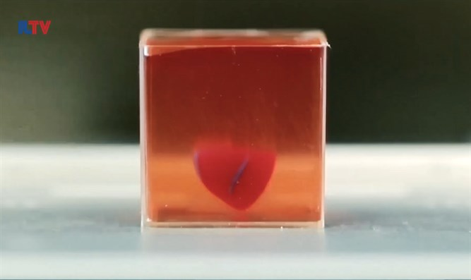 World's first 3-D printed heart